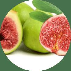 aydın incir meyve