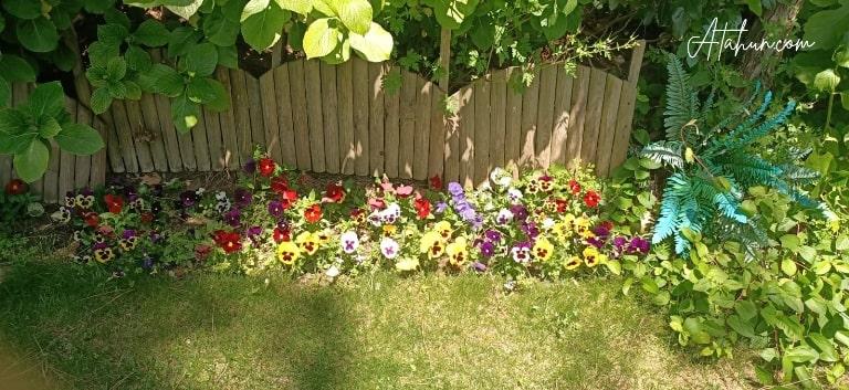 bahçe düzenleme bakım