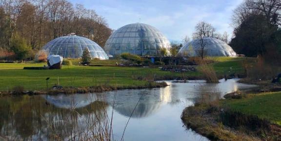 isviçrede botanik bahçe