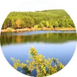 Yozgat milli parkı