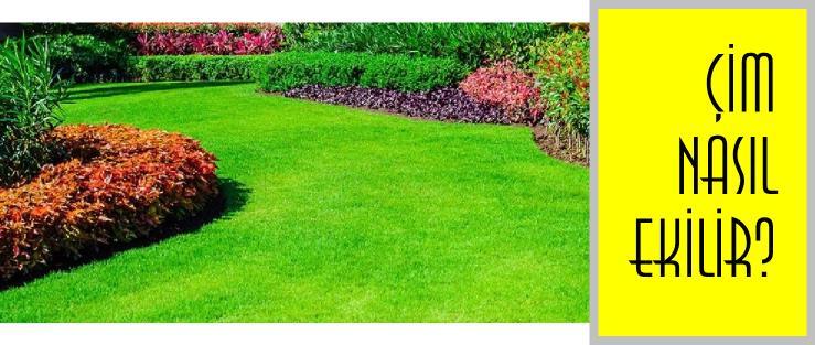 Çim ekimi nasıl yapılmalıdır?