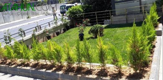 Bahçeye Rulo Çim Uygulama