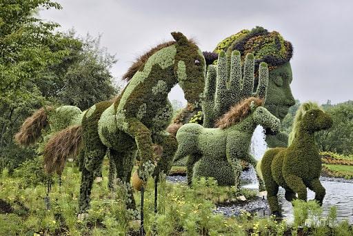 bitkilere şekil verme topiary