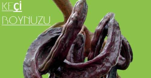 cinsel güce hangi bitki iyi gelir