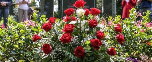 mezara ekilen çiçek ve bitkiler
