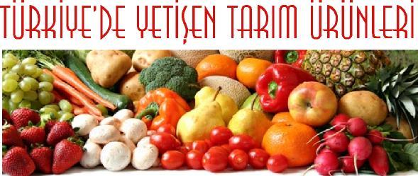 türkiyede tarım ürünleri isimleri