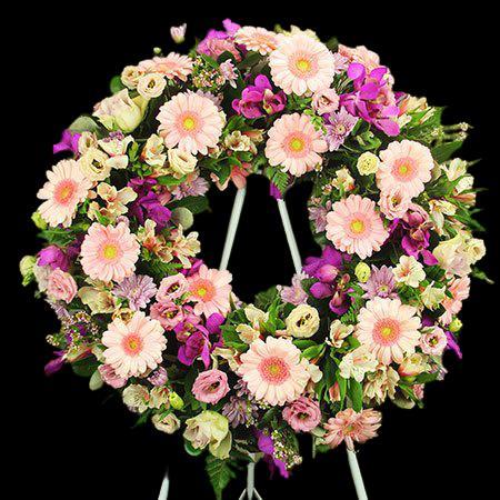 çelenk çiçeği