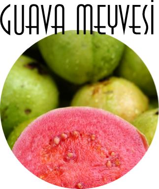 guava nedir?