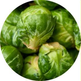 brüksel lahanası yemek tarifi