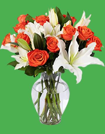 hastaneye hangi çiçekler gönderilmelidir