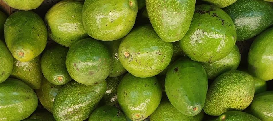 avokado içinde bulunan vitaminler