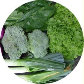 hangi sebzeler şubat ayı yetişir