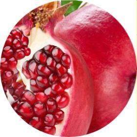 kasım ayında ekilen meyveler