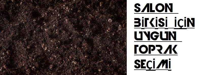 Bitkisel ürünlerin yetiştirilmesi için en uygun toprak türü hangisidir