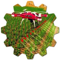 Amerikada yetişen tarım ürünleri