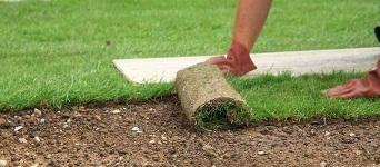 bahçeye rolu çim seriniz